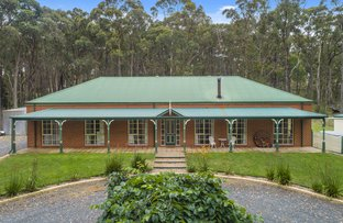 Picture of 19 Pine  Court, Dales Creek VIC 3341