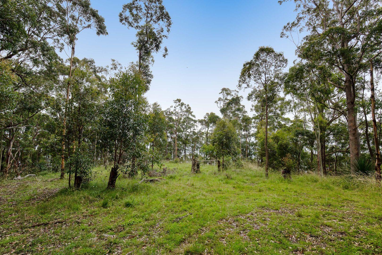 304 Q3 Wallaby Gully Road, Ellalong NSW 2325, Image 0