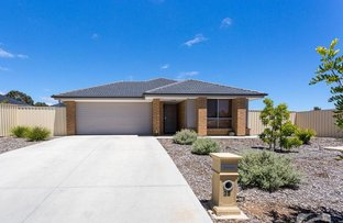 Picture of 38 Lime Street, Strathalbyn SA 5255