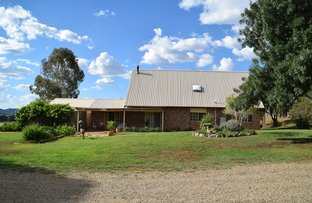 Picture of Apsley Dale 8788 Burrendong Way, Wellington NSW 2820