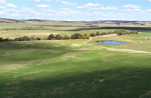 Picture of 136 Mullins Creek Road, Breadalbane NSW 2581