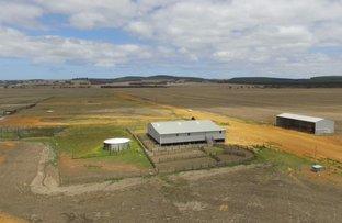 Picture of Kangaroo Valley, 40091South Coast Highway, Green Range WA 6328