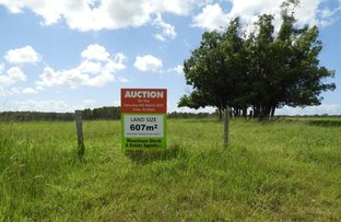 Picture of Lot 1 Rawdon Island Road, Rawdon Island NSW 2446