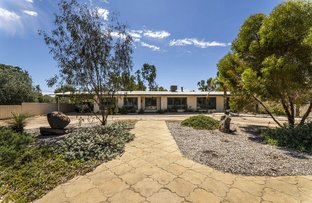 Picture of 217 Mckinley Street, Moora WA 6510