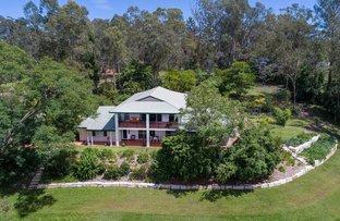 Picture of 56 Jacaranda Av, Kenmore Hills QLD 4069
