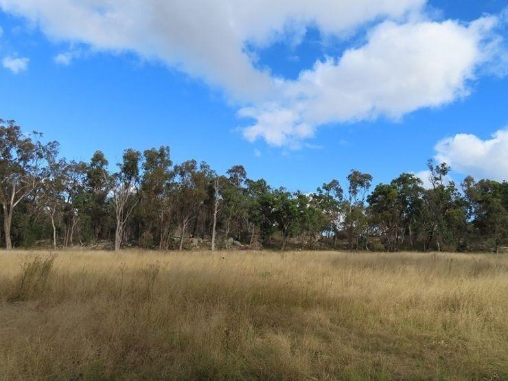 180 Dalmoak Road, Stanthorpe QLD 4380, Image 1