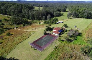 Picture of 840 Wattley Hill Rd, Topi Topi NSW 2423