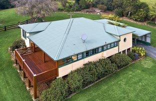 Picture of 376 Slingsbys Road, Dorrigo NSW 2453