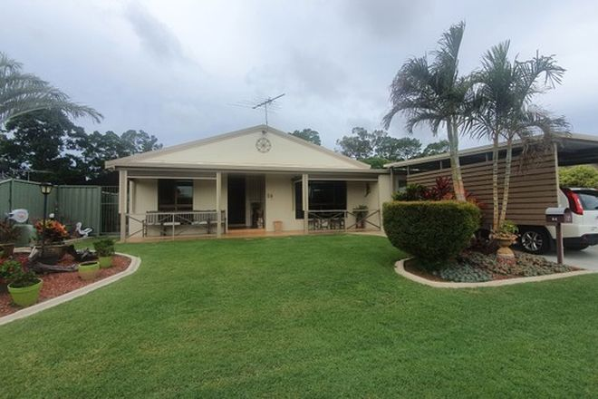 Picture of 54 Phoenix Avenue, BONGAREE QLD 4507