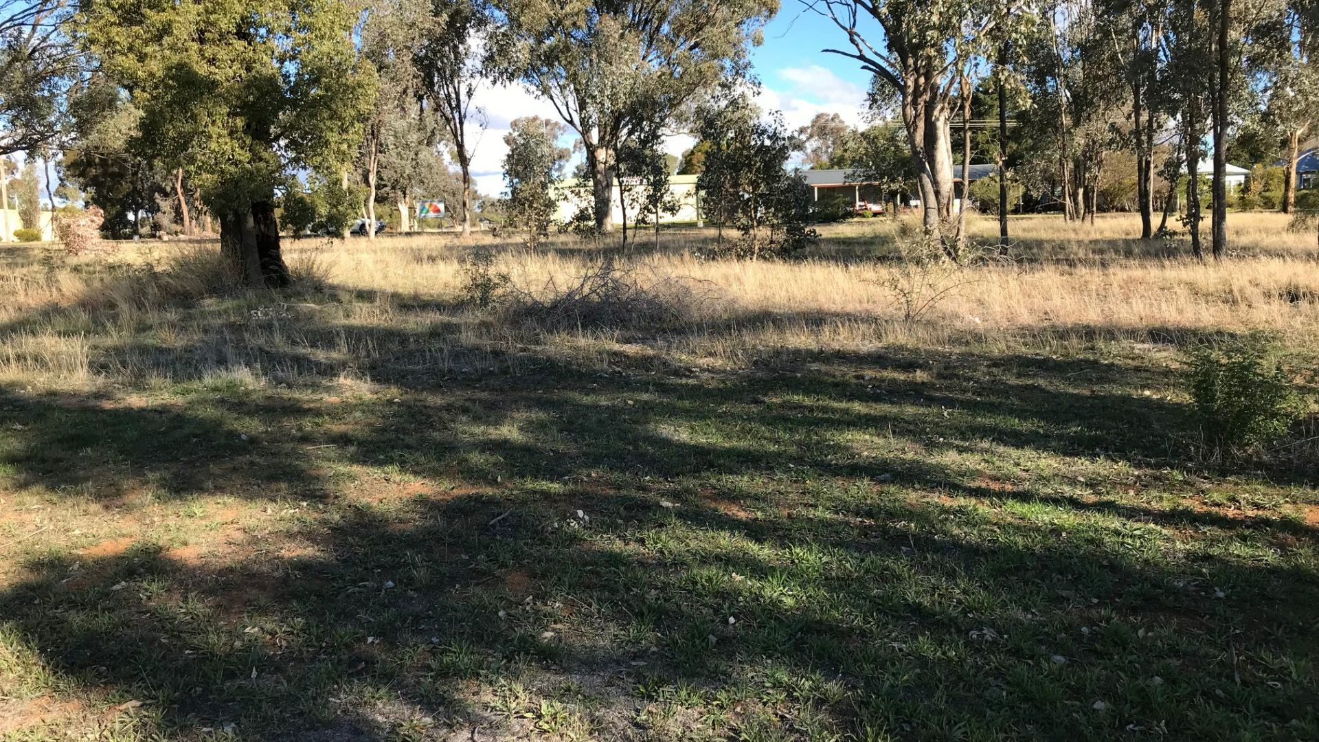 Lot 8 Belmore Street, Woodstock NSW 2793, Image 1