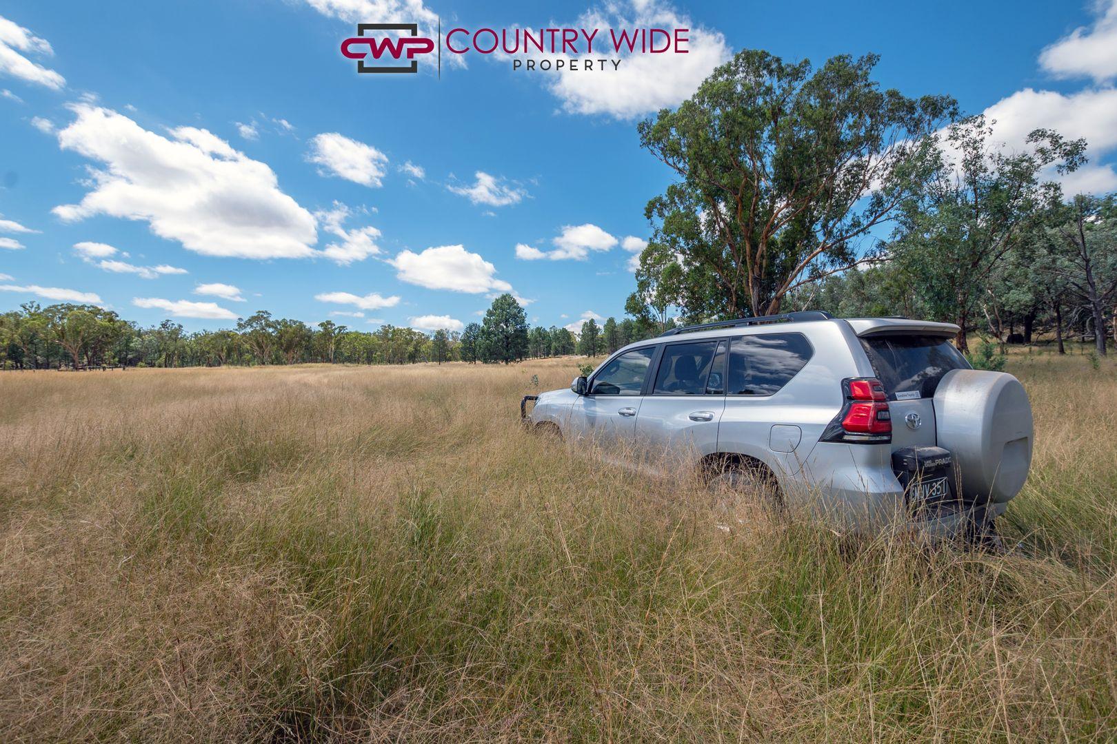 730 Wallangra Road, Ashford NSW 2361, Image 2