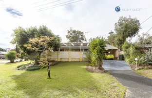Picture of 6 Downing Crescent, Wanneroo WA 6065