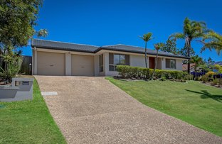 Picture of 11 Wattle Glen Place, Robina QLD 4226