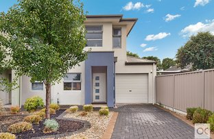 Picture of 35B Lanark Avenue, Mitchell Park SA 5043