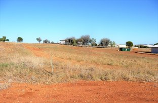 Picture of 86 RED SWAMP PLACE, York WA 6302