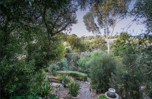 Picture of 24 Pindee Street, Hallett Cove SA 5158