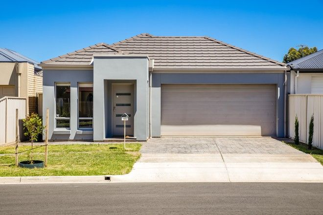 Picture of 10 Sanders  Street, RICHMOND SA 5033
