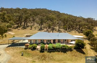 Picture of 16 O'Malley Place, Googong NSW 2620
