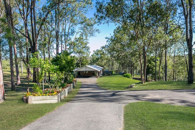 Picture of 11 Belah Street, MOUNT CROSBY QLD 4306