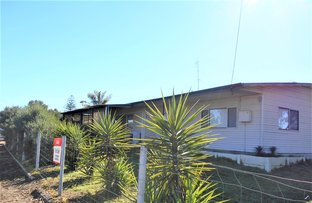 Picture of 47 Rogers Avenue, Katanning WA 6317