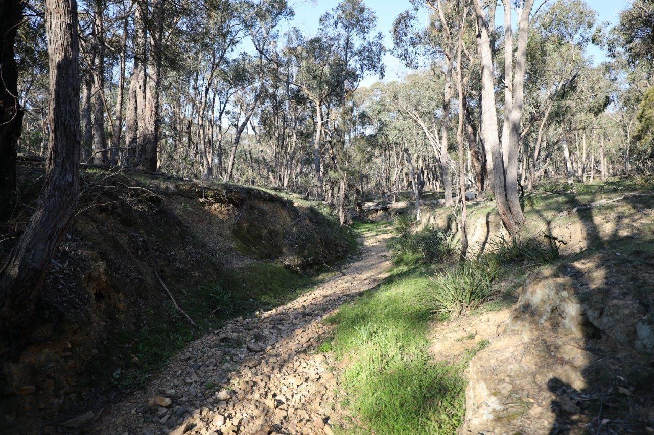262, 2401 Lumley Rd, Lake Bathurst NSW 2580, Image 1