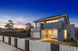 17 Ann Street, Willoughby NSW 2068