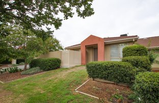 Picture of 3/28 Rollston Street, Amaroo ACT 2914