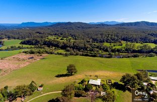 Picture of 389 Martells Road, Bellingen NSW 2454