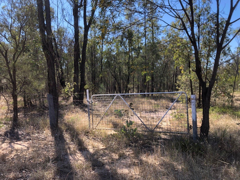 L2 L Tree Creek Road, Kowguran QLD 4415, Image 0
