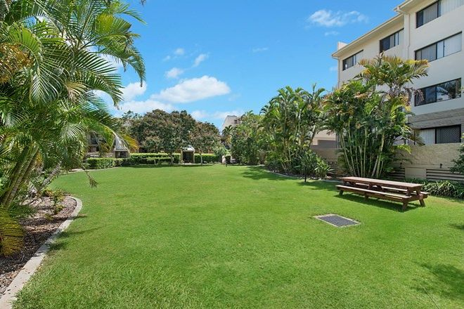 Picture of 51/55 Harries Road, COORPAROO QLD 4151