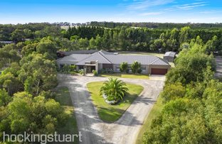 Picture of 13 Ironbark Court, Torquay VIC 3228
