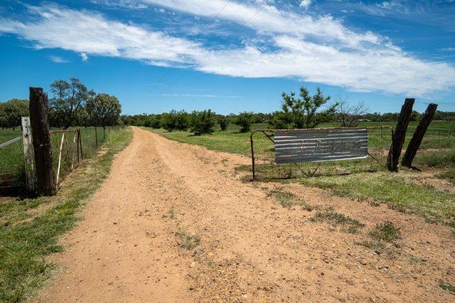 Picture of 3443 Ellerngerah RD, WARREN NSW 2824
