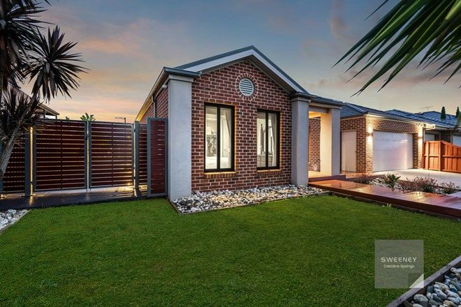 Picture of 18 Darlinghurst Place, TAYLORS HILL VIC 3037