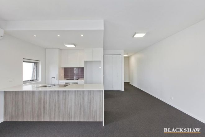 Picture of 303/9 Watkins Street, BRUCE ACT 2617
