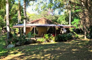 Picture of 281 Gold Coast Springbrook Rd, Mudgeeraba QLD 4213