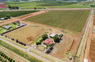 Picture of 775 Dempsey Road, Leeton NSW 2705