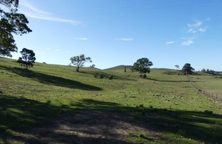 Picture of Lot 5 Lookdown Rd, Bungonia NSW 2580