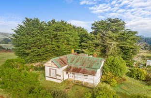 Picture of 1182 Oldina Road, Oldina TAS 7325