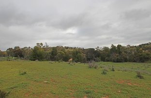 Picture of Lot 5 Peacock Street, Burra SA 5417