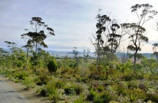 Picture of 342 Heathy Hill Drive, Saltwater River TAS 7186