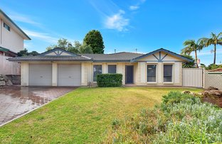 Picture of 12 WALKER CRT, Enfield SA 5085