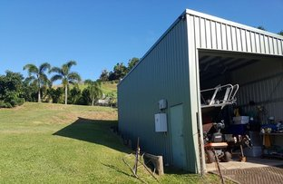Picture of 17 Riverside Terrace, South Mission Beach QLD 4852