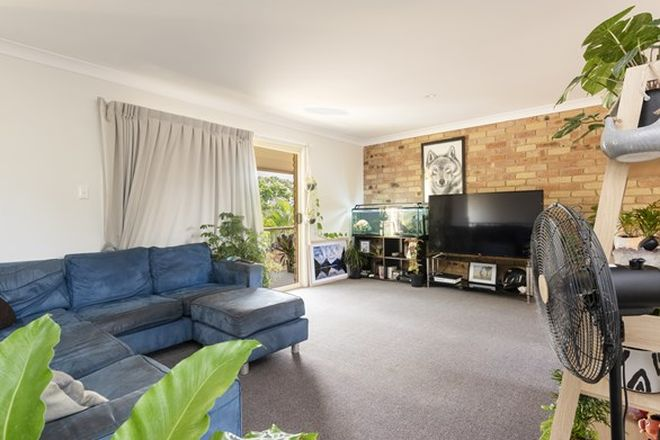 Picture of 3/13 Hilltop Close, GOONELLABAH NSW 2480