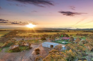 Picture of 1599 Ridley Road, Angas Valley SA 5238