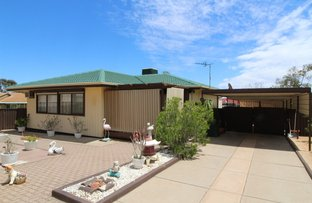 Picture of 3 Narbonne, Port Augusta SA 5700