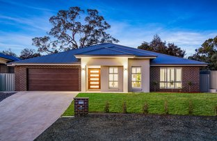 Picture of 29 Egret Way, Thurgoona NSW 2640