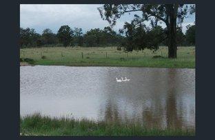 1223 Beebo Seventeen Mile Road, Beebo QLD 4385
