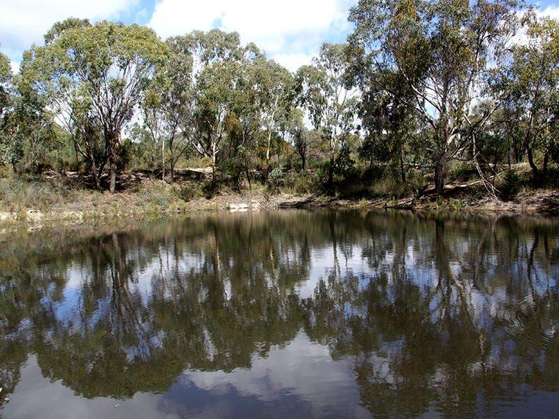 528 Ridge Road, Cooks Gap NSW 2850, Image 0