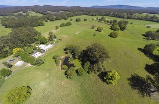 Picture of Bucca NSW 2450