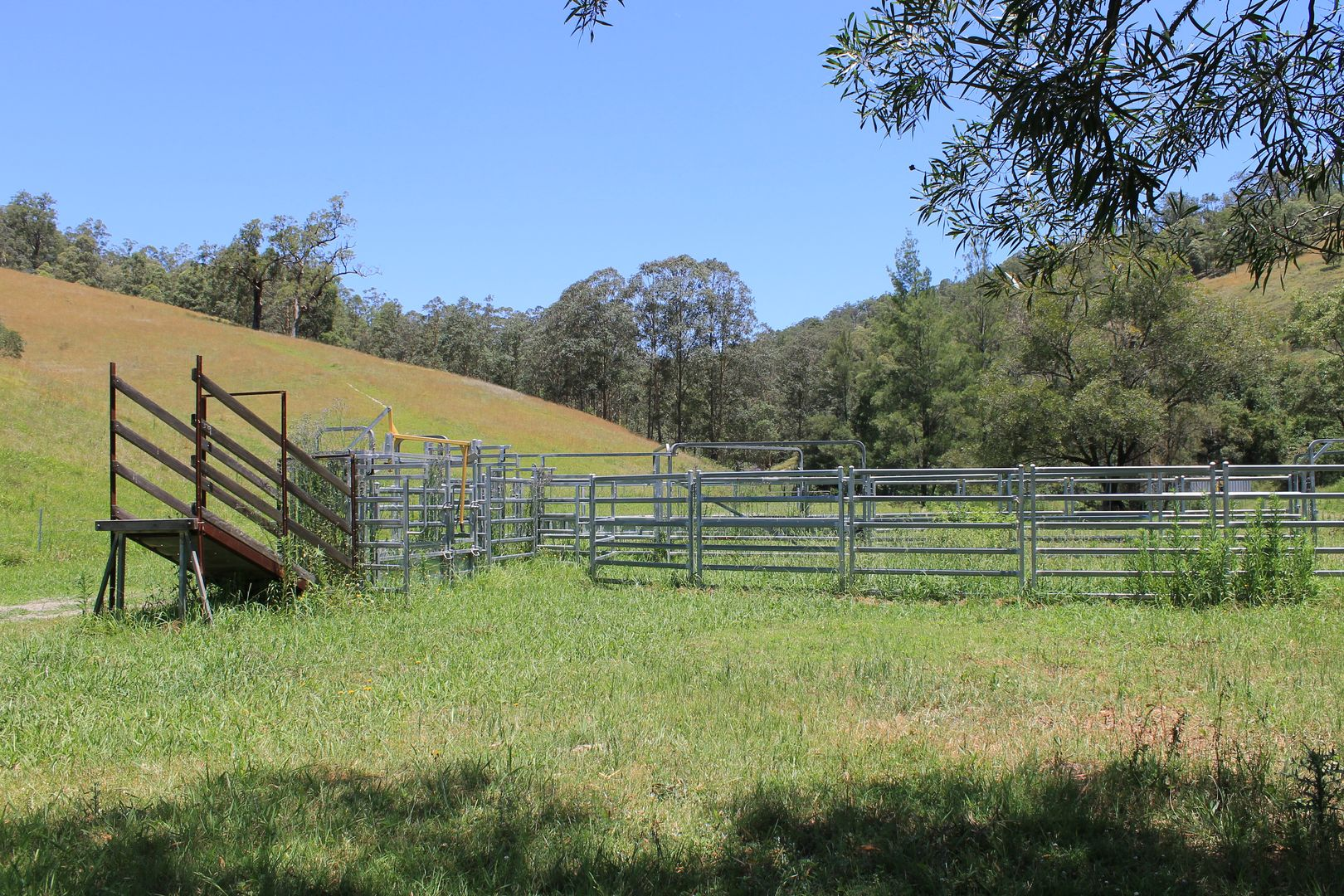 545 Masseys Creek Road, Eccleston Via, East Gresford NSW 2311, Image 1